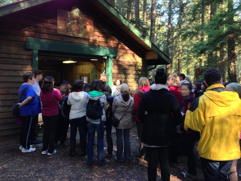 Collingwood Neighbourhood House–morning hike; learning about the Fish Hatchery