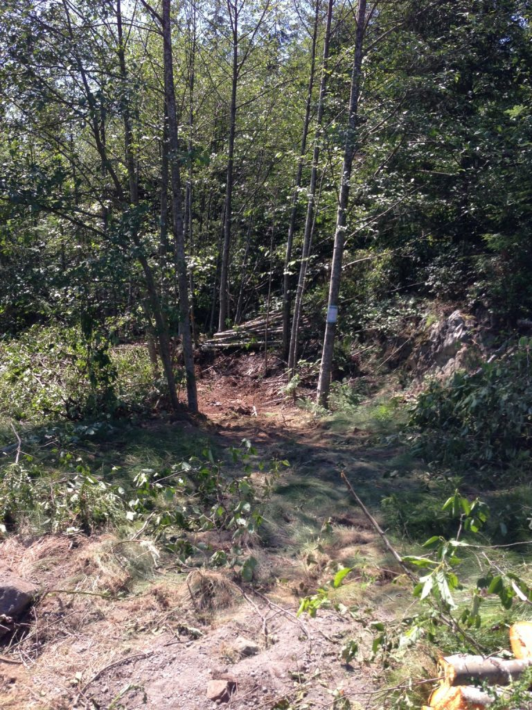 Fairy Fen-Thompson Road trail work-Summer 2013: the work begins at the Thompson Road circle