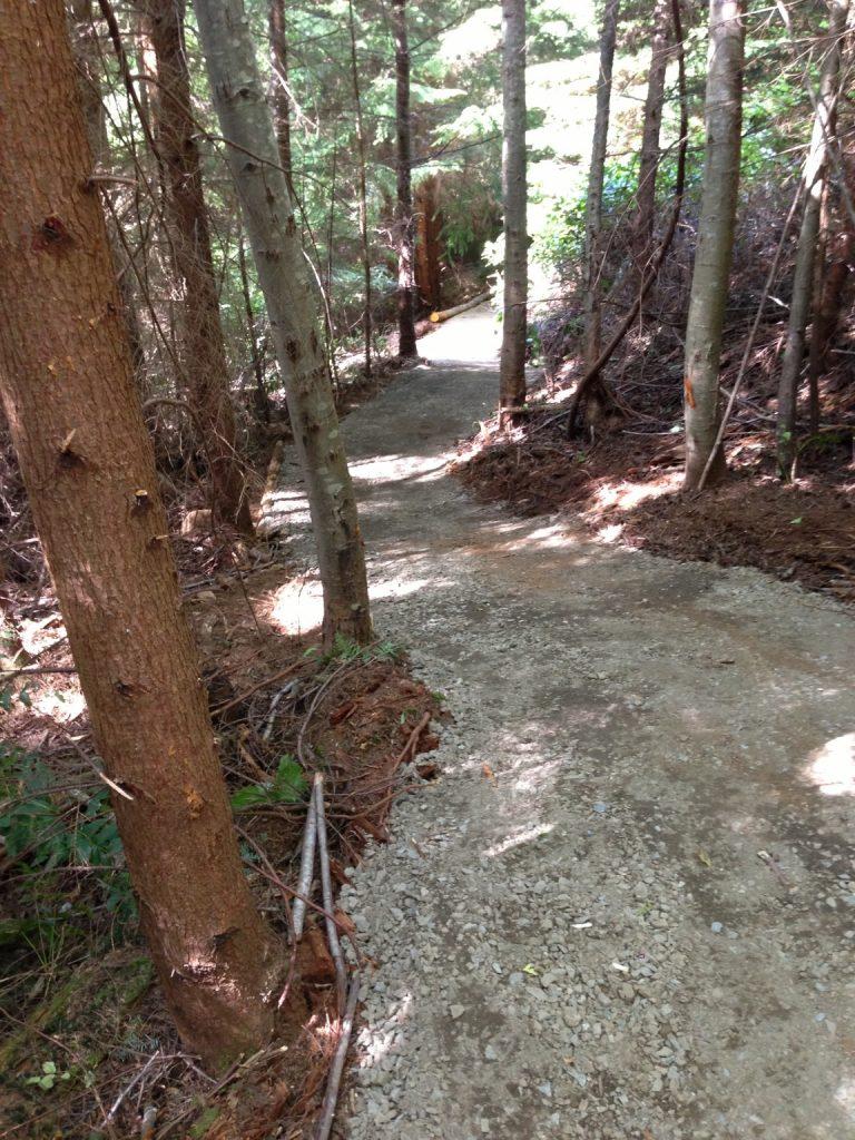 Fairy Fen-Thompson Road trail work-Summer 2013