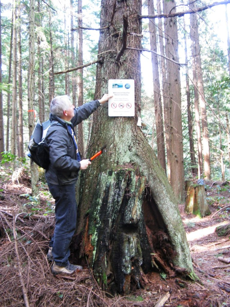 Fairy Fen--Putting up signs in March 2012
