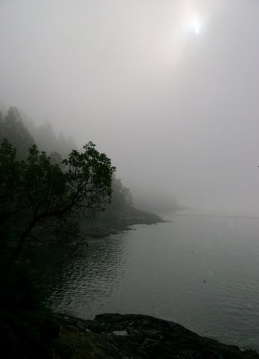 A misty day at the Cape