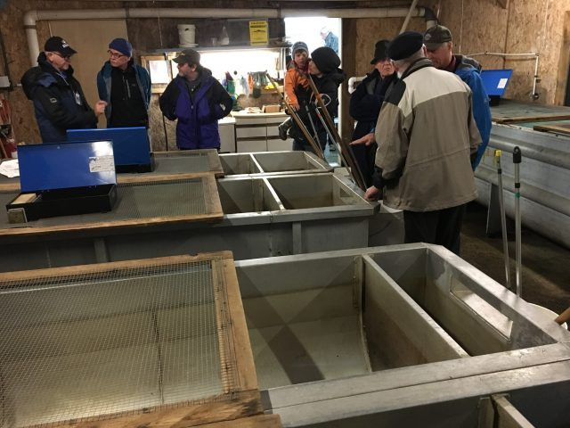 Learning about the salmon lifecycle and how they are reared at the Hatchery