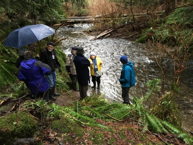Learning about streamkeeping activities in Terminal Creek, near the Salmon Hatchery