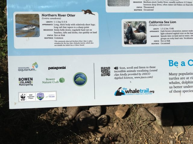 The new Whale Trail sign