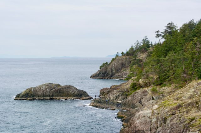 Looking West from the cliffs at Cape Roger Curtis