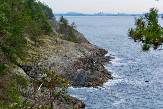 Looking East from the cliffs at Cape Roger Curtis